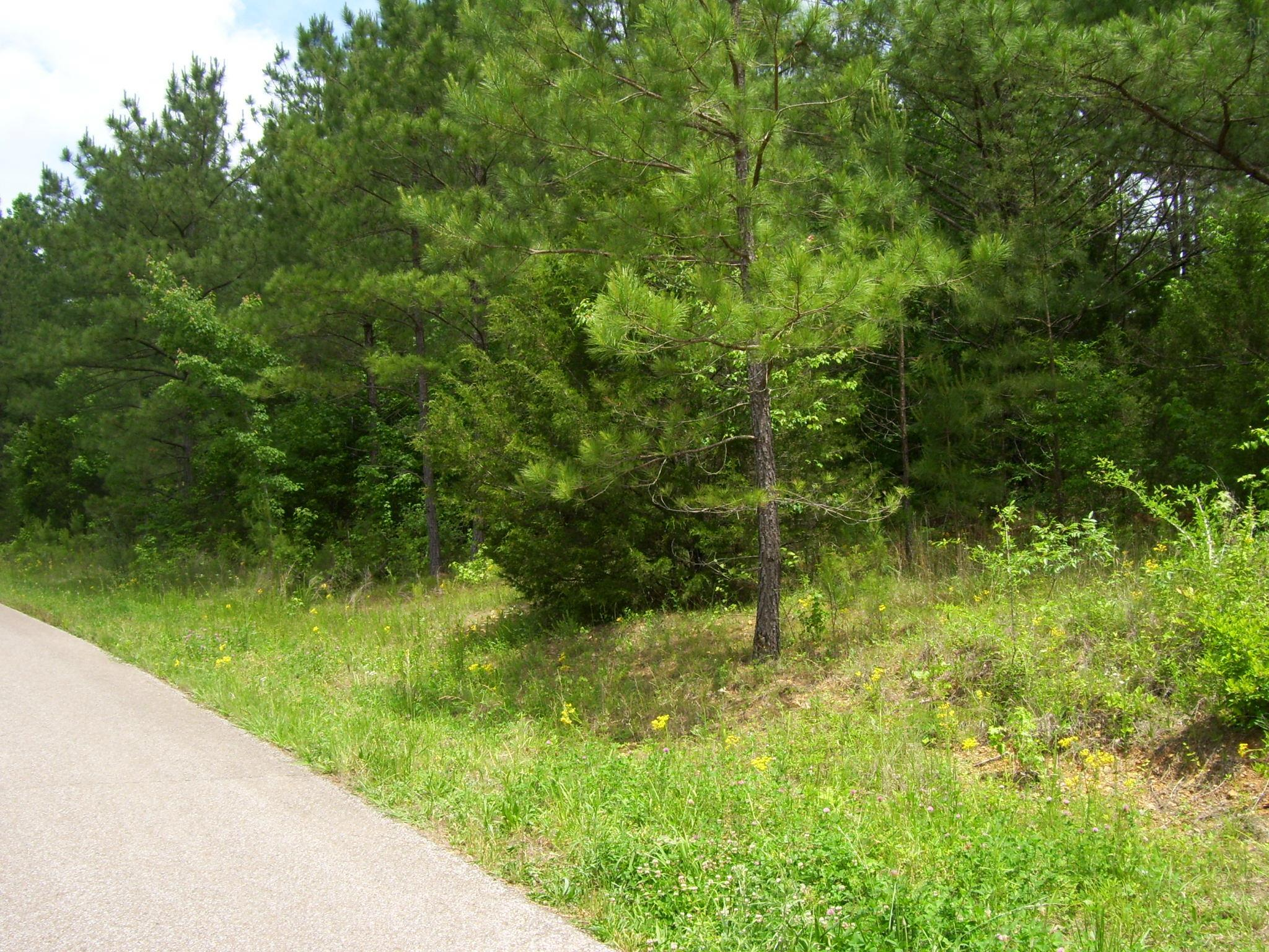 0 Howell Rd, Parsons, TN 38363 - Parsons, TN real estate listing