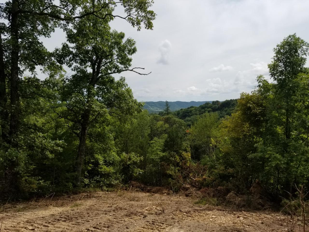 32 .51ac Gentry Lane, Celina, TN 38551 - Celina, TN real estate listing