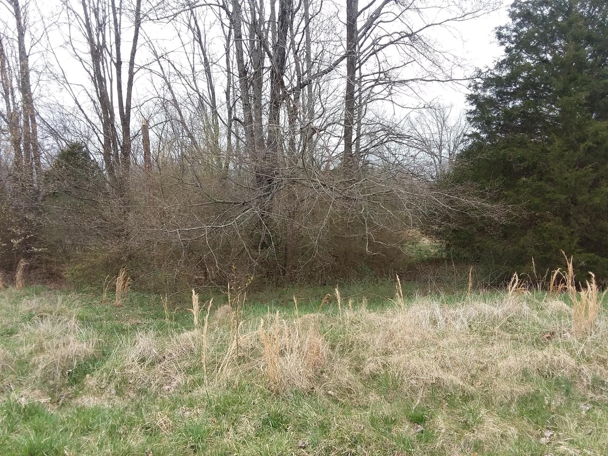 0 Stacy Ave, Lawrenceburg, TN 38464 - Lawrenceburg, TN real estate listing
