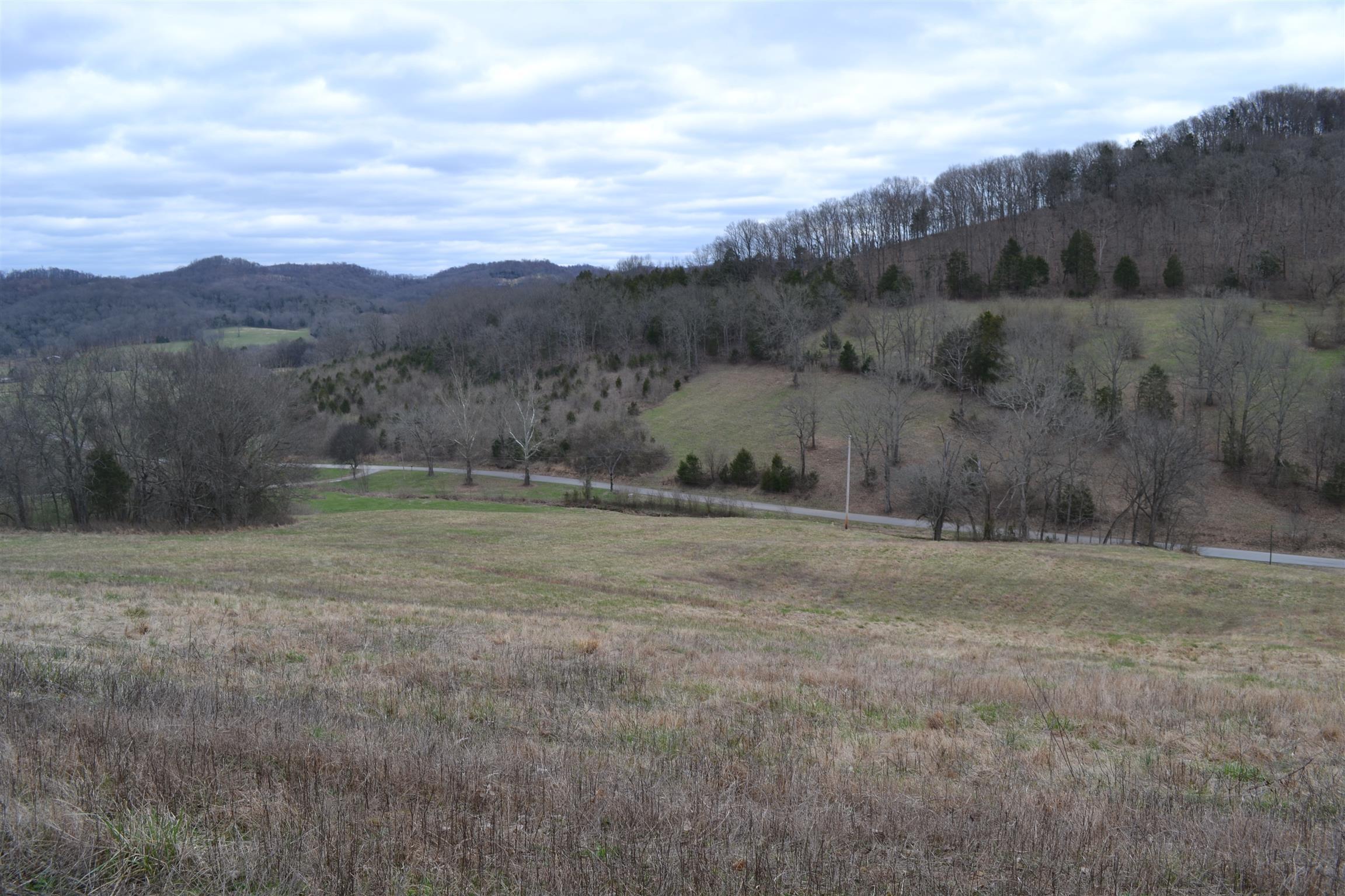 7 Hog Hollow Ln, Bethpage, TN 37022 - Bethpage, TN real estate listing