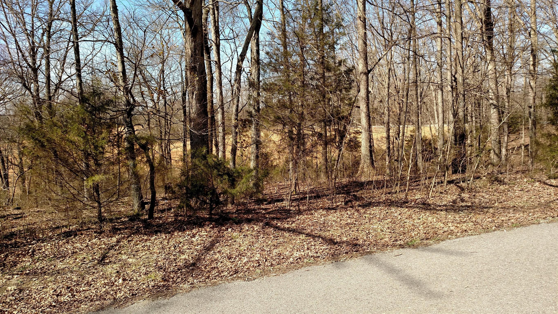 337 Calvert Ridge Rd, Westmoreland, TN 37186 - Westmoreland, TN real estate listing