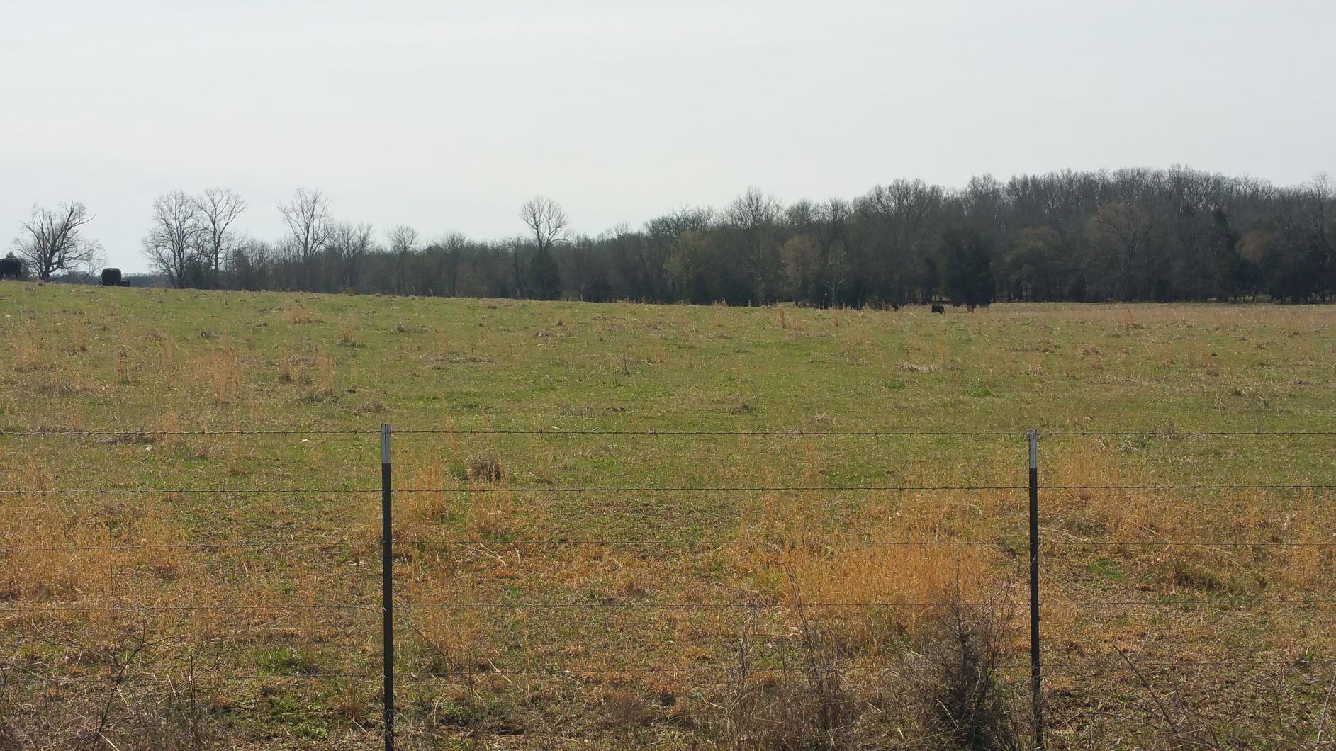 1 Beasley Rd, Chapel Hill, TN 37034 - Chapel Hill, TN real estate listing