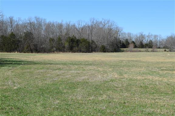 794 Fosterville Rd N, Bell Buckle, TN 37020 - Bell Buckle, TN real estate listing