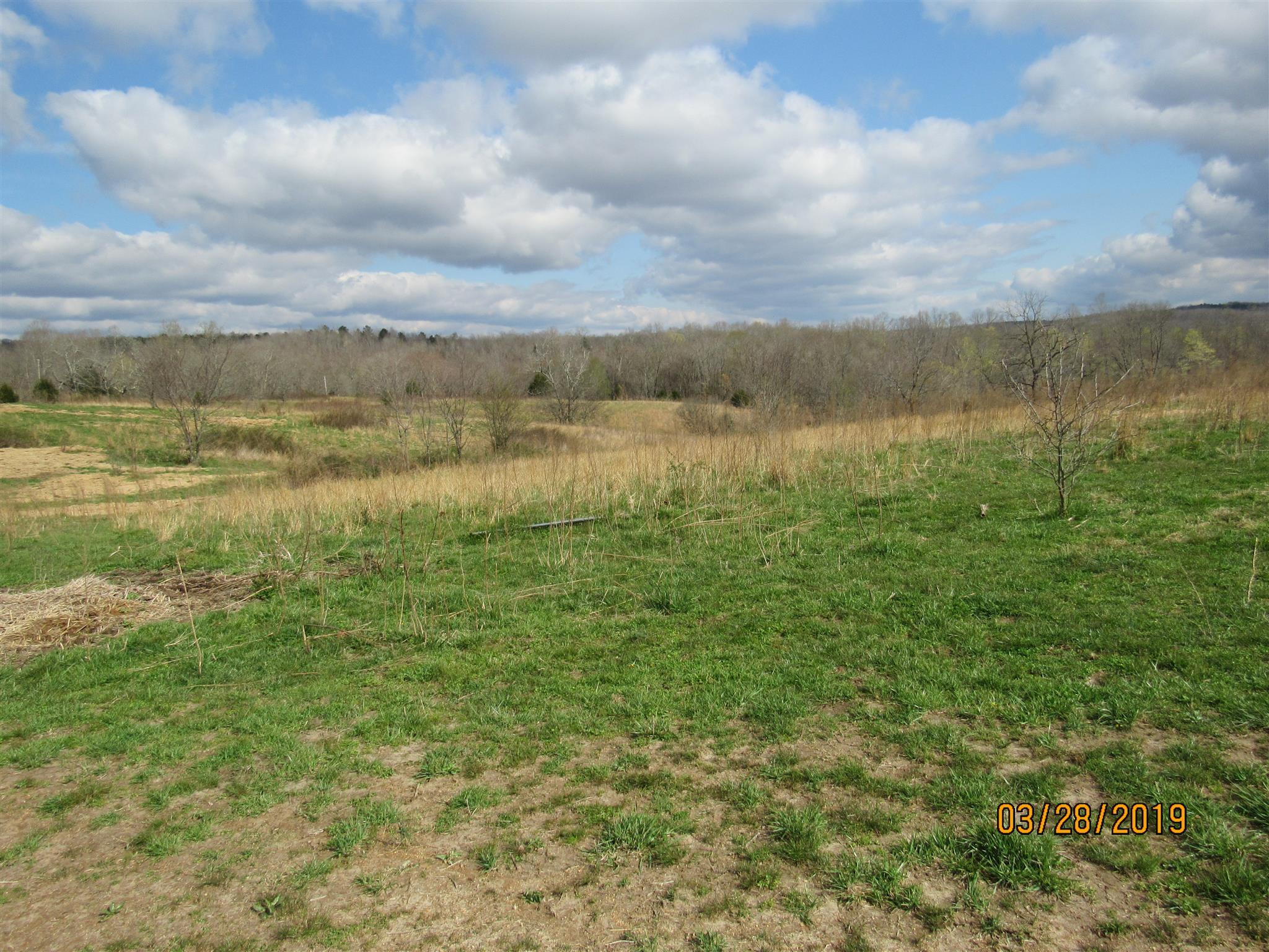 0 Trace Creek Rd, Hohenwald, TN 38462 - Hohenwald, TN real estate listing