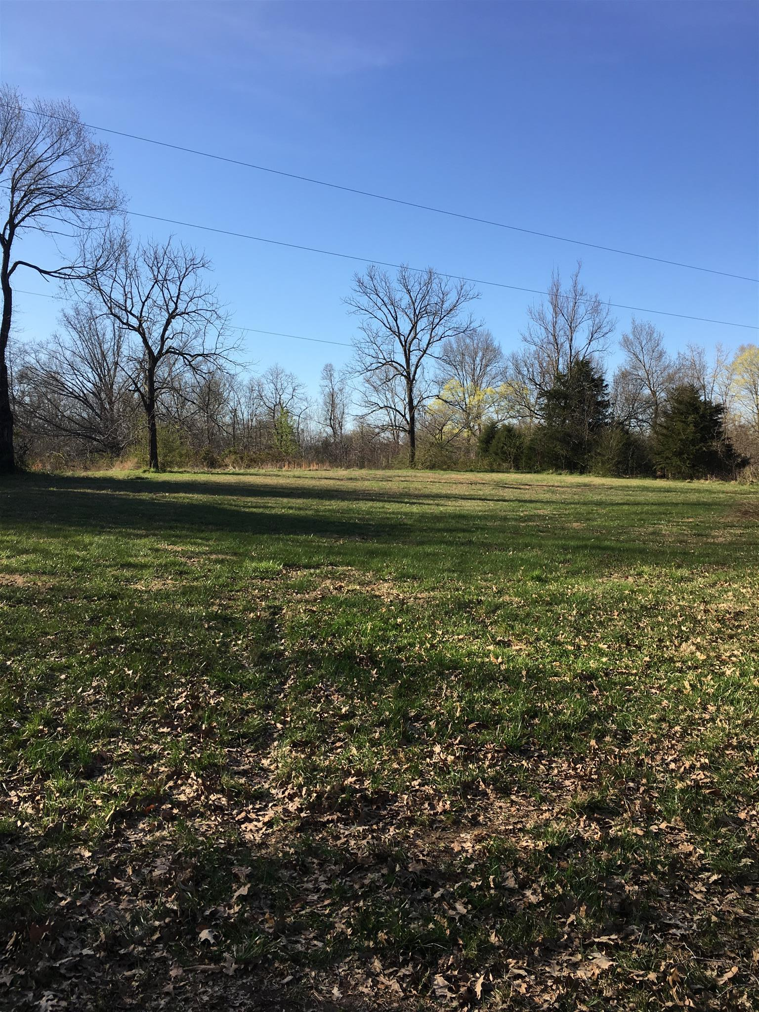 0 Downs Rd, Cumberland City, TN 37050 - Cumberland City, TN real estate listing