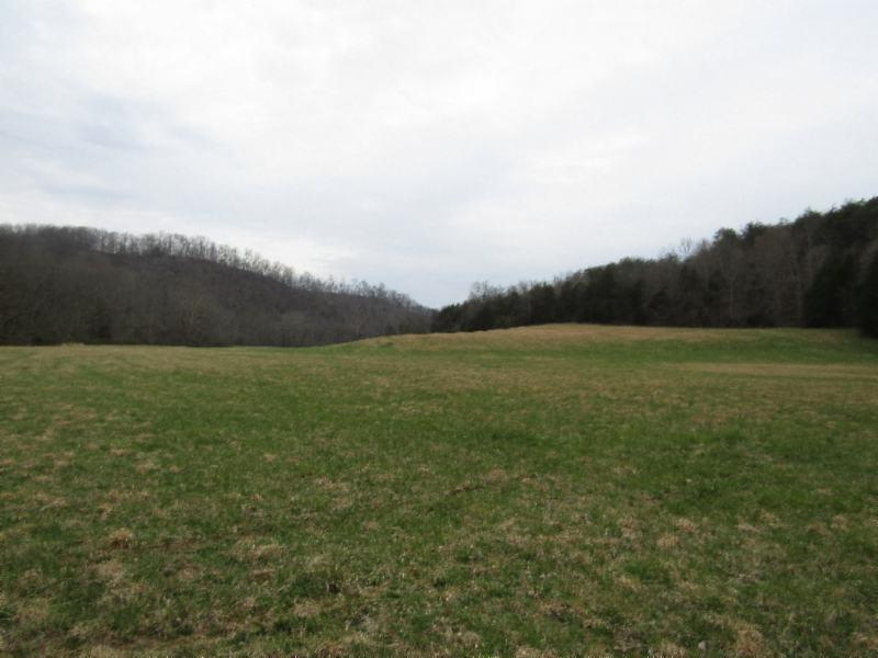 251 .42ac Bucky Howard, Hilham, TN 38568 - Hilham, TN real estate listing