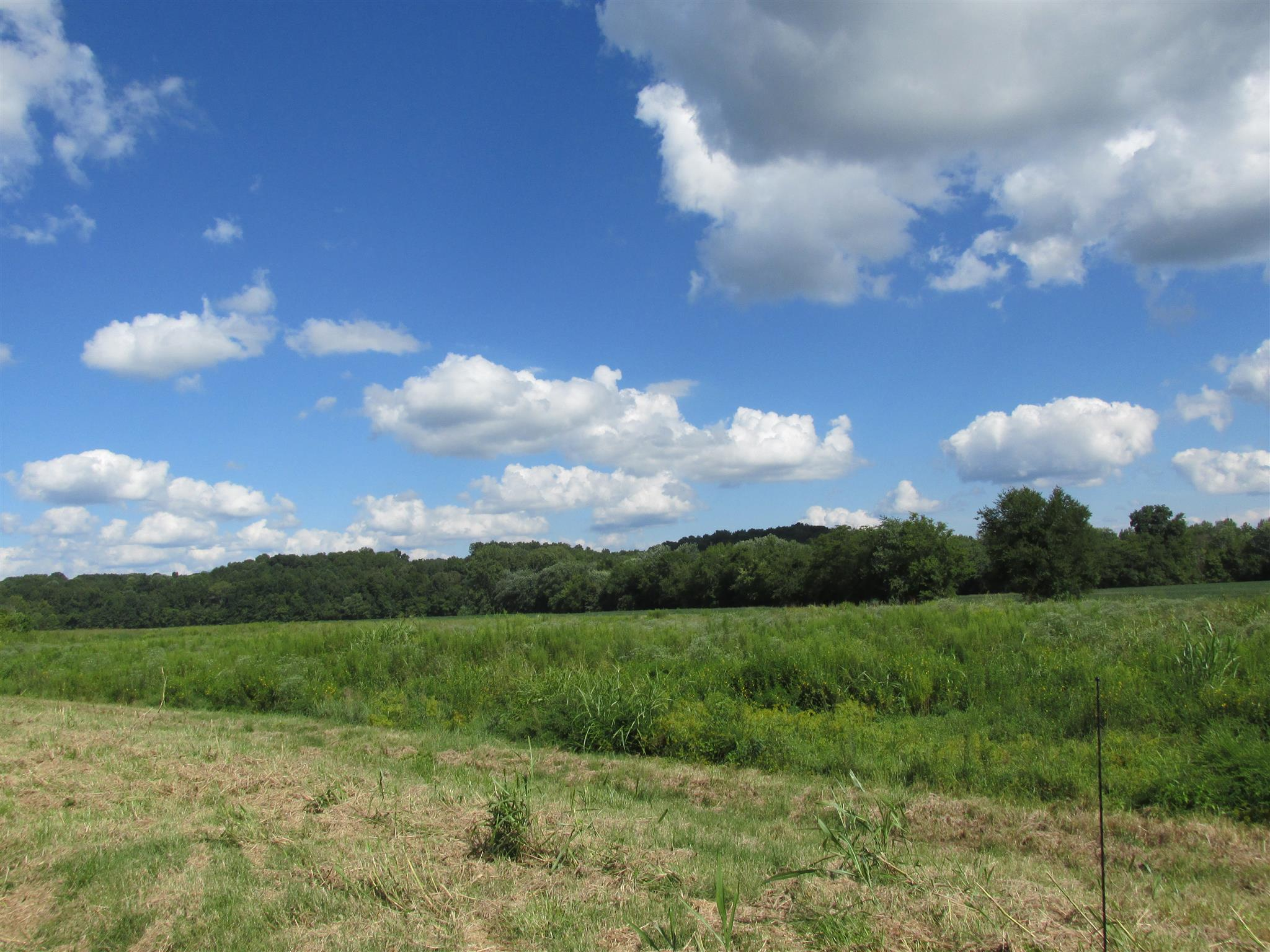0 Hematite West Rd Property Photo - Palmyra, TN real estate listing