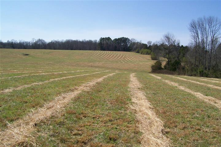 3600 Will Thompson Road, Walling, TN 38587 - Walling, TN real estate listing