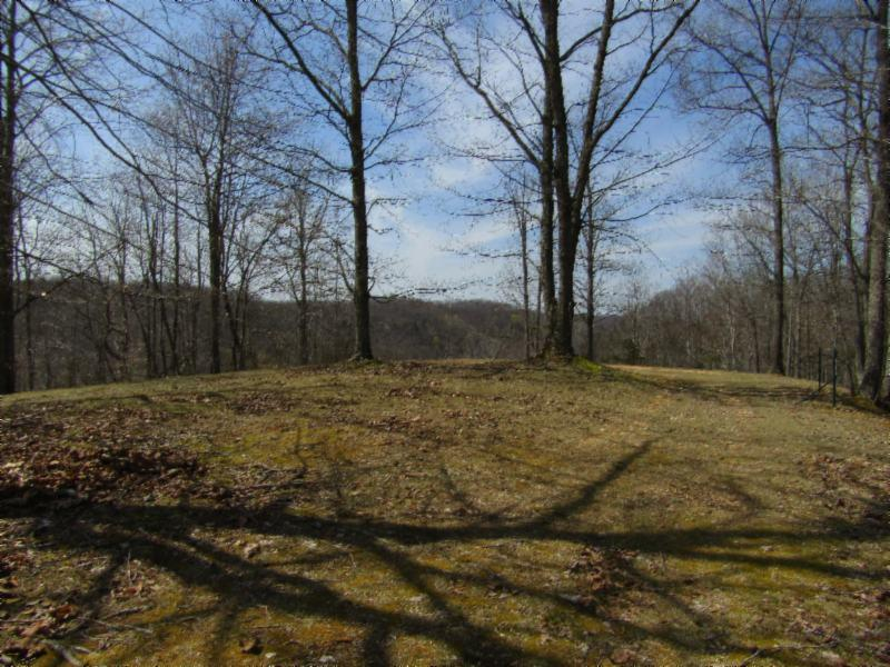 17 .63ac Hickory Ln, Hilham, TN 38568 - Hilham, TN real estate listing