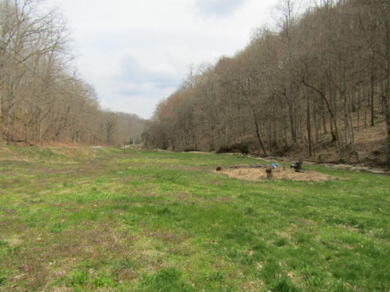 43 .74ac Arcot Road Property Photo - Celina, TN real estate listing