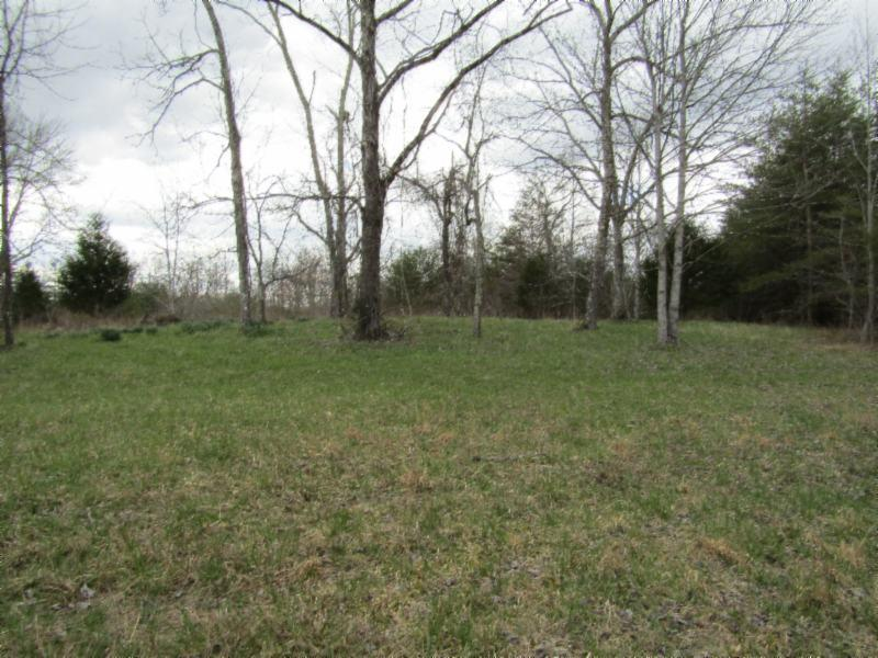 58 .53ac Ett Brown , Deer Lodge, TN 37726 - Deer Lodge, TN real estate listing