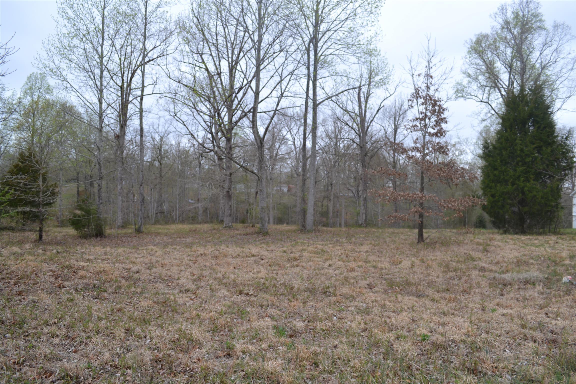 0 Lucas Ridge Ln, Waverly, TN 37185 - Waverly, TN real estate listing