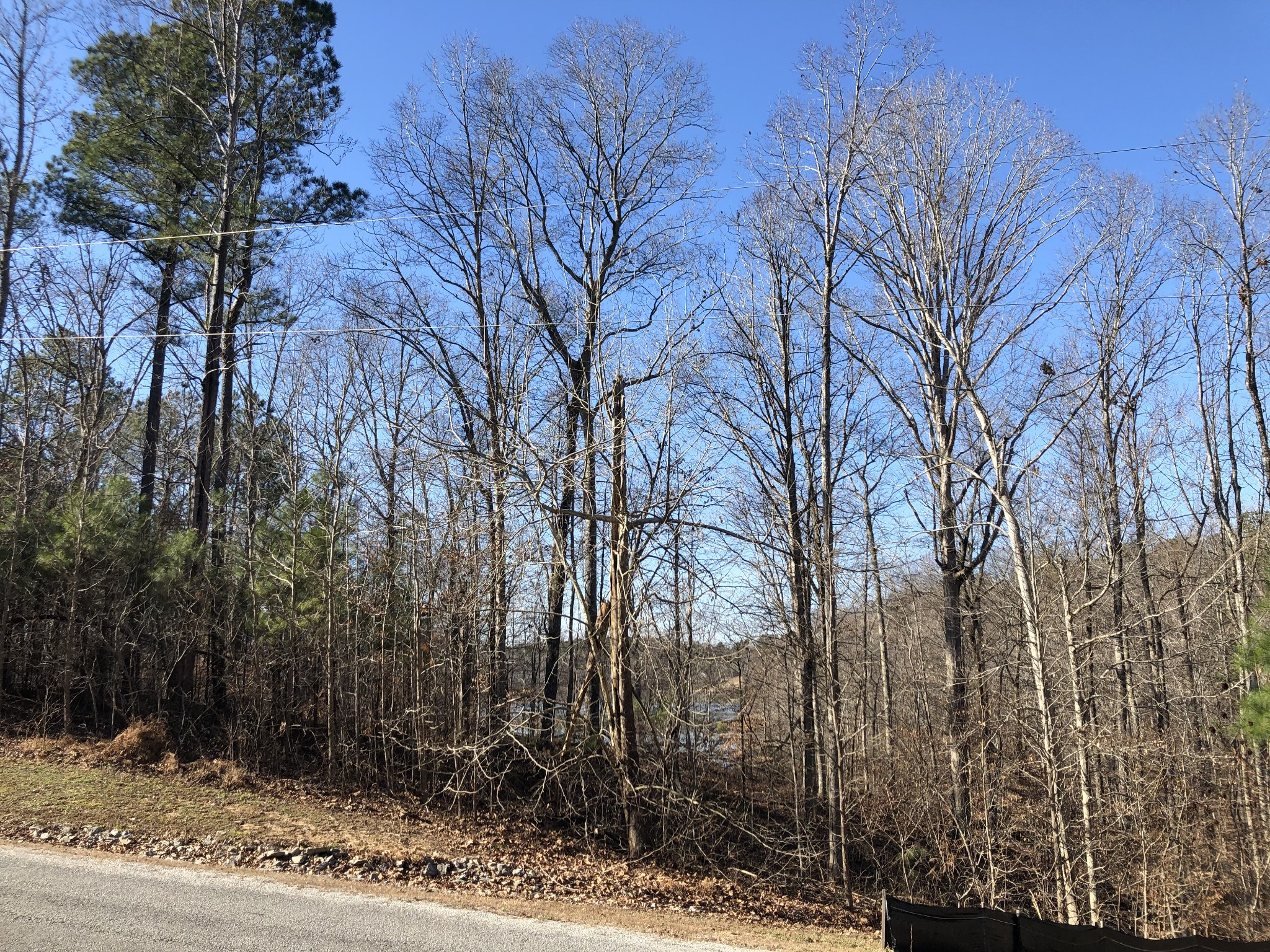 820 Strike King Dr, Cedar Grove, TN 38321 - Cedar Grove, TN real estate listing