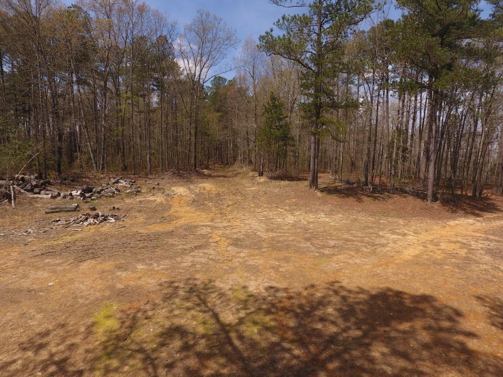 0 Preston Baggett RD, Tennessee Ridge, TN 37178 - Tennessee Ridge, TN real estate listing