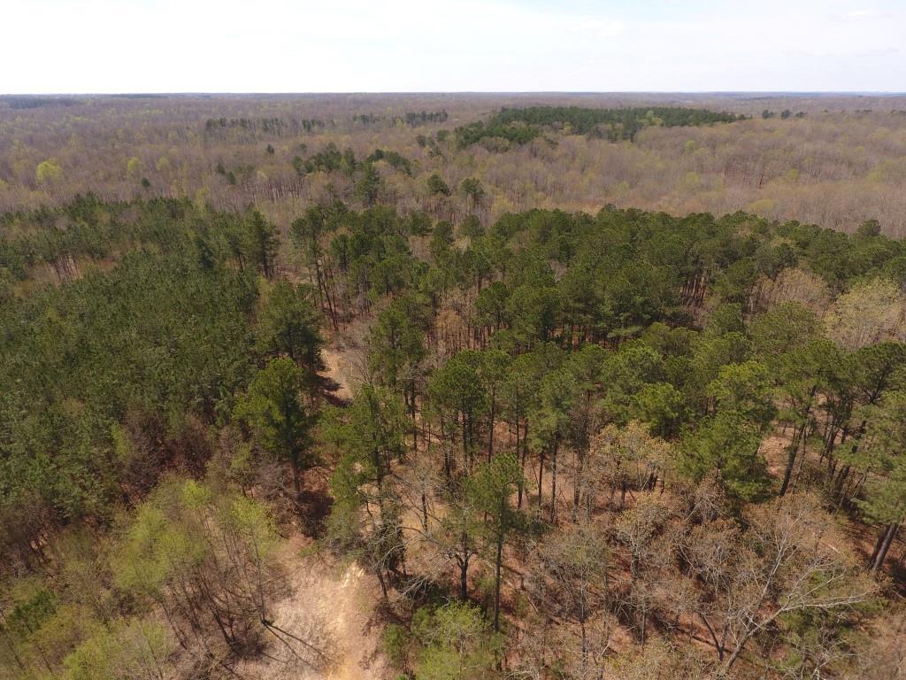 0 Highway 49, Tennessee Ridge, TN 37178 - Tennessee Ridge, TN real estate listing