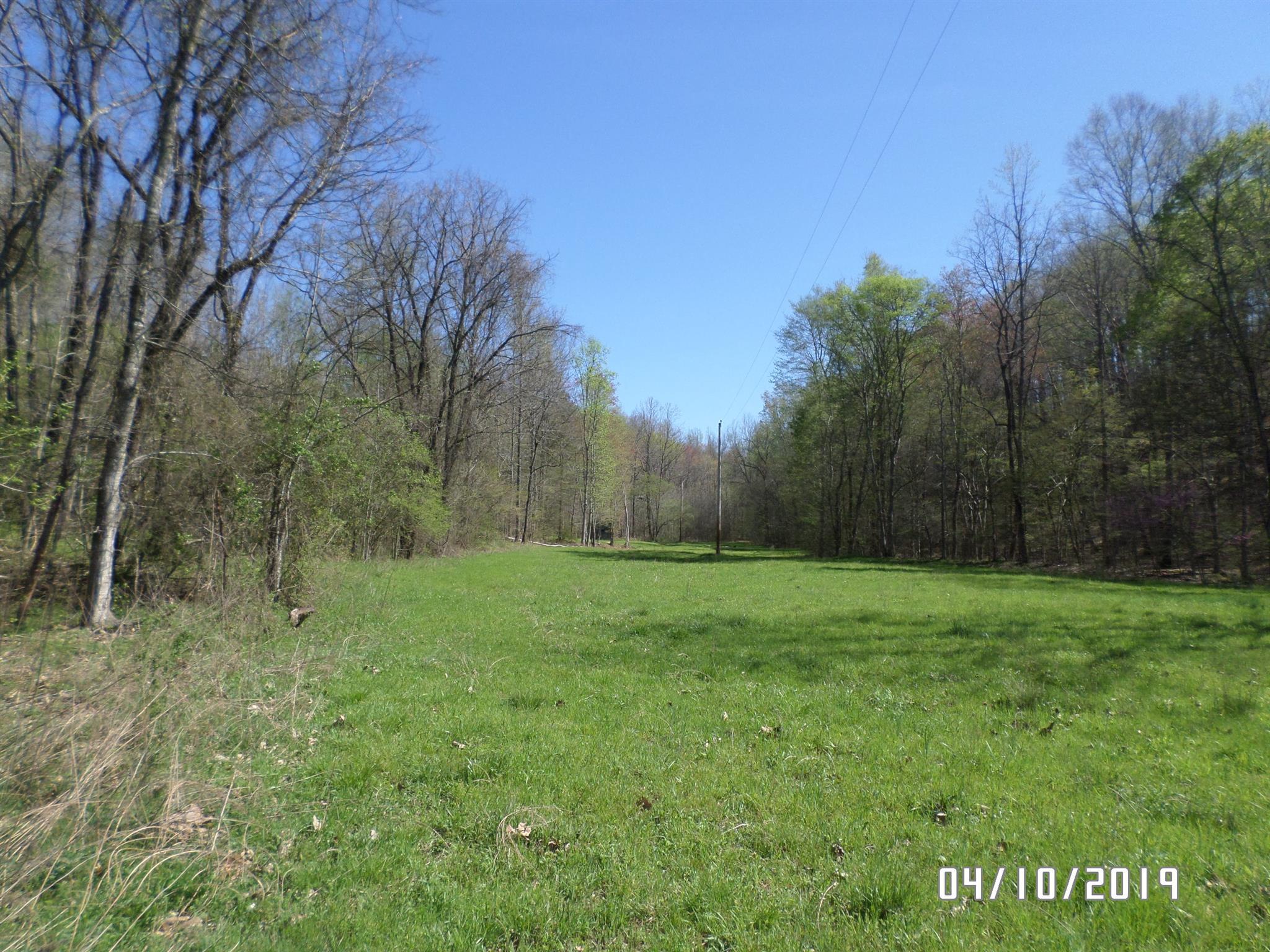 0 Bear Creek Rd, Collinwood, TN 38450 - Collinwood, TN real estate listing