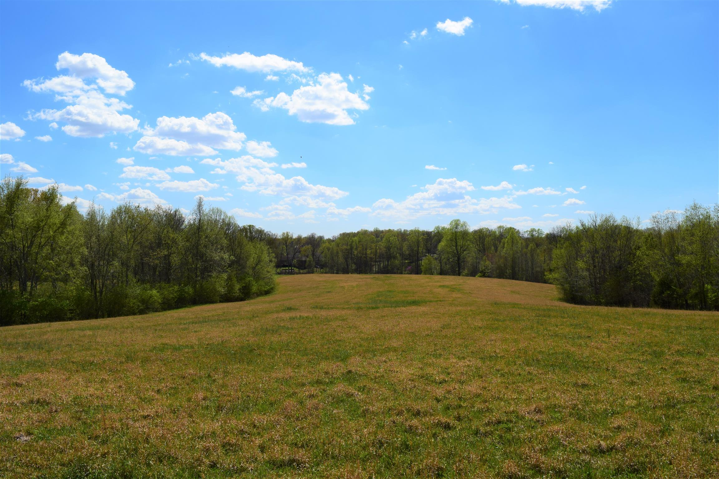0 Aden Road, Fairview, TN 37062 - Fairview, TN real estate listing
