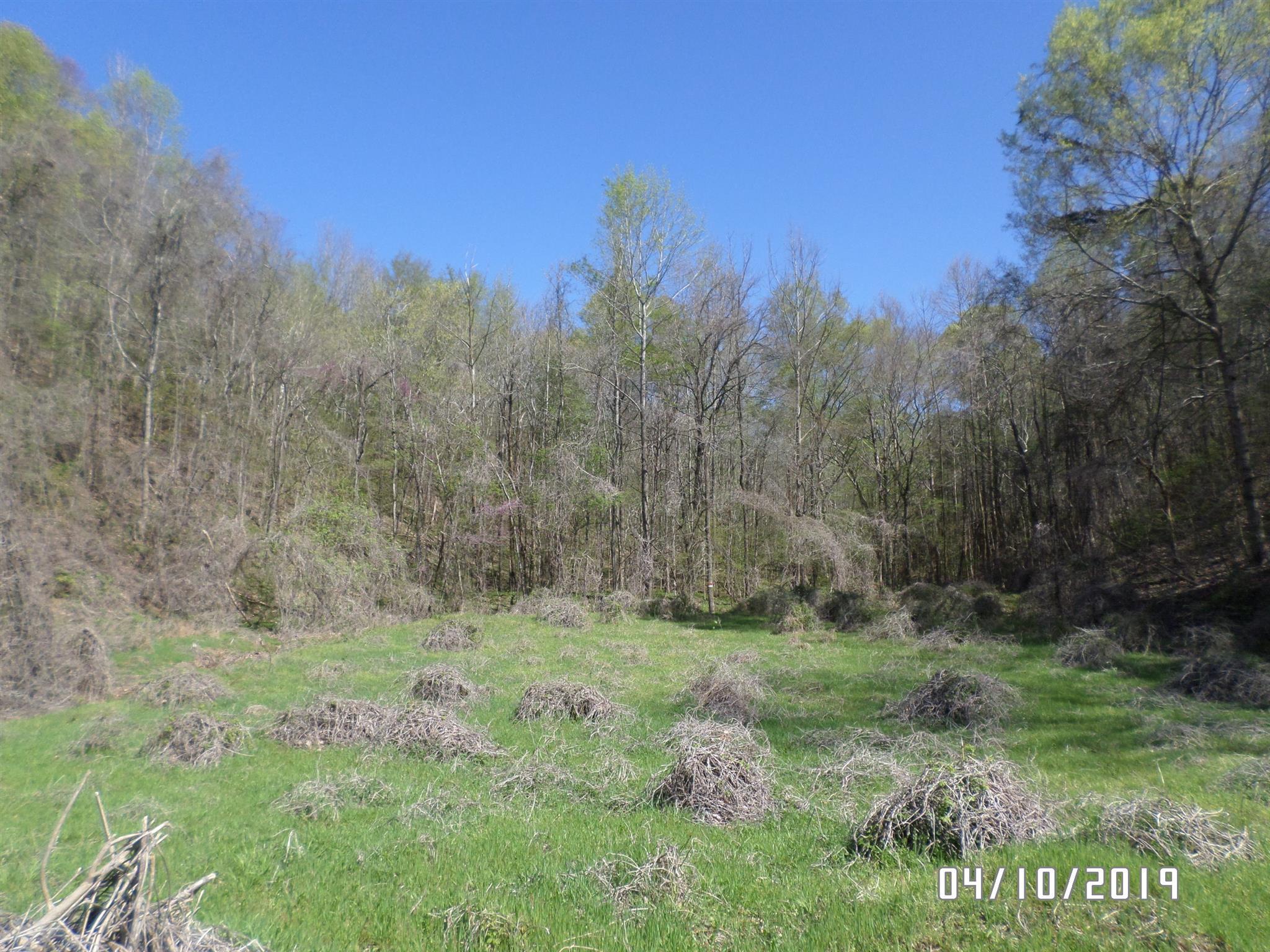 1888 Bear Creek Rd, Collinwood, TN 38450 - Collinwood, TN real estate listing