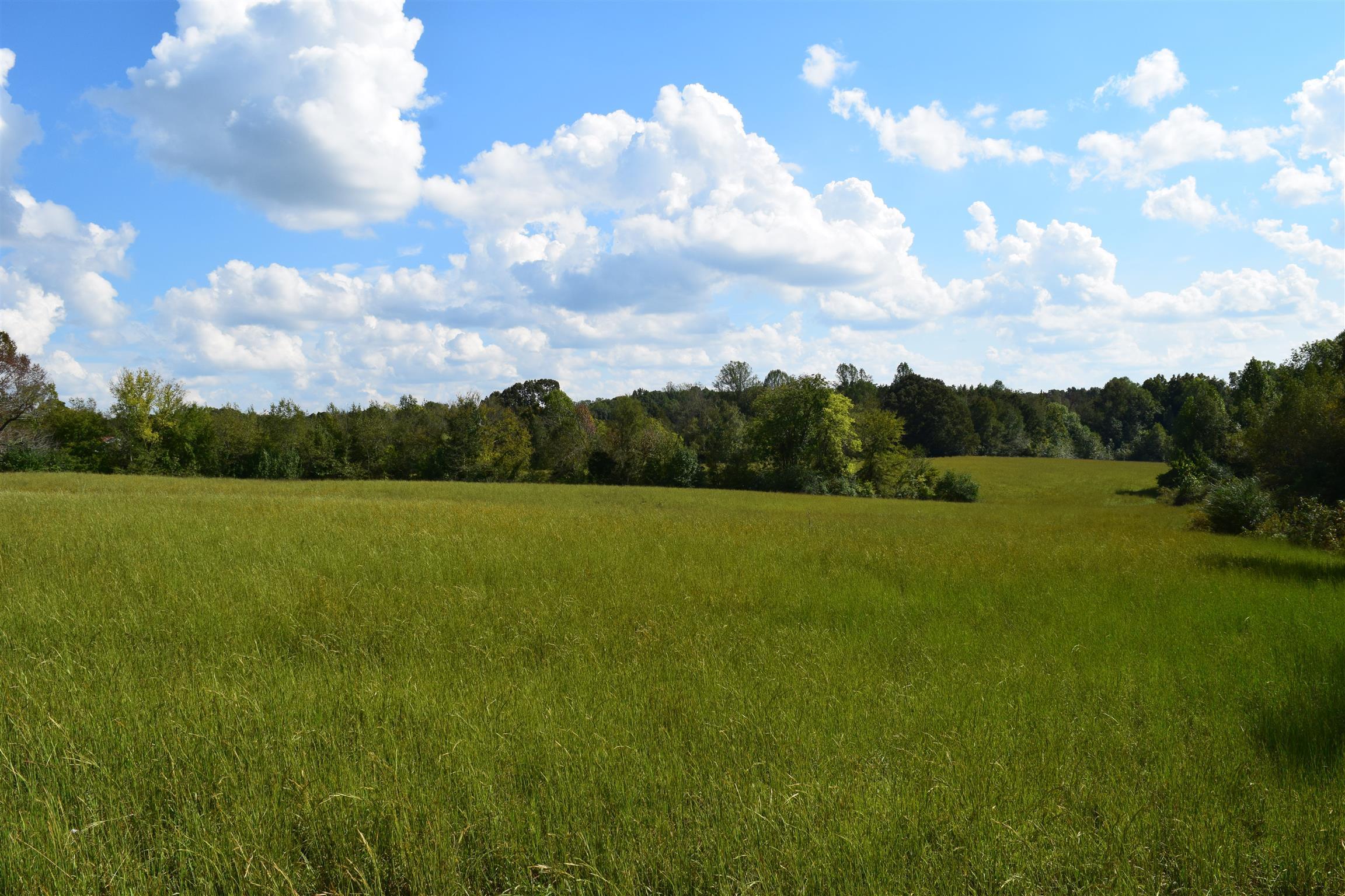 7425 Crow Cut Rd, Fairview, TN 37062 - Fairview, TN real estate listing