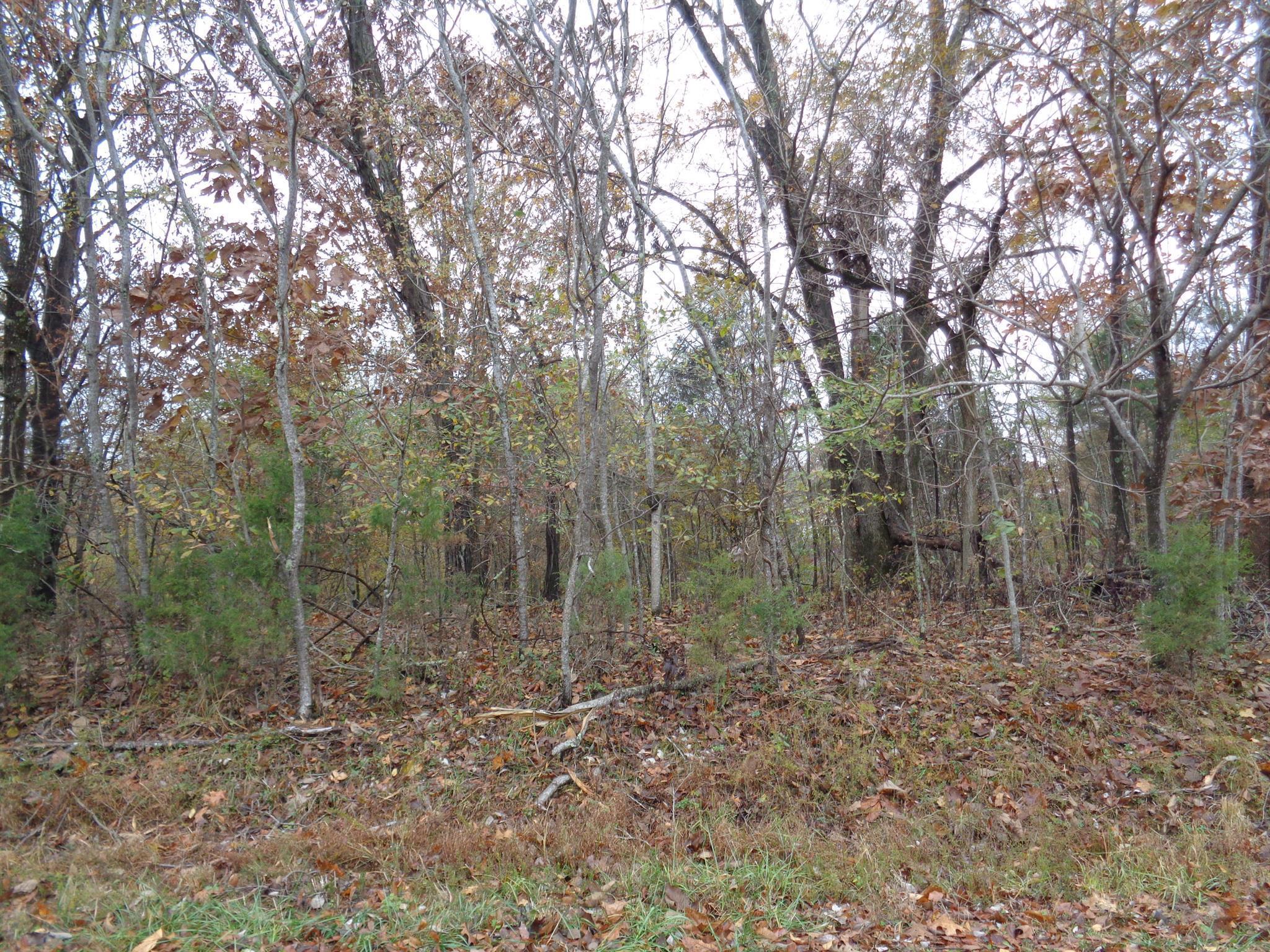 1 Huffman Park lots 82/83, Lynchburg, TN 37352 - Lynchburg, TN real estate listing
