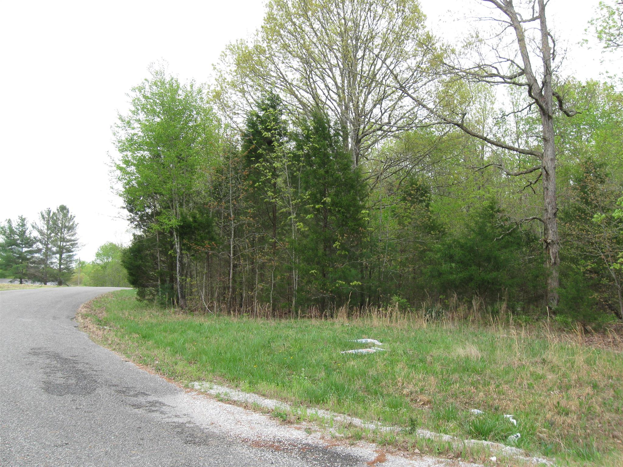 0 Lakehaven Rd, Tullahoma, TN 37388 - Tullahoma, TN real estate listing