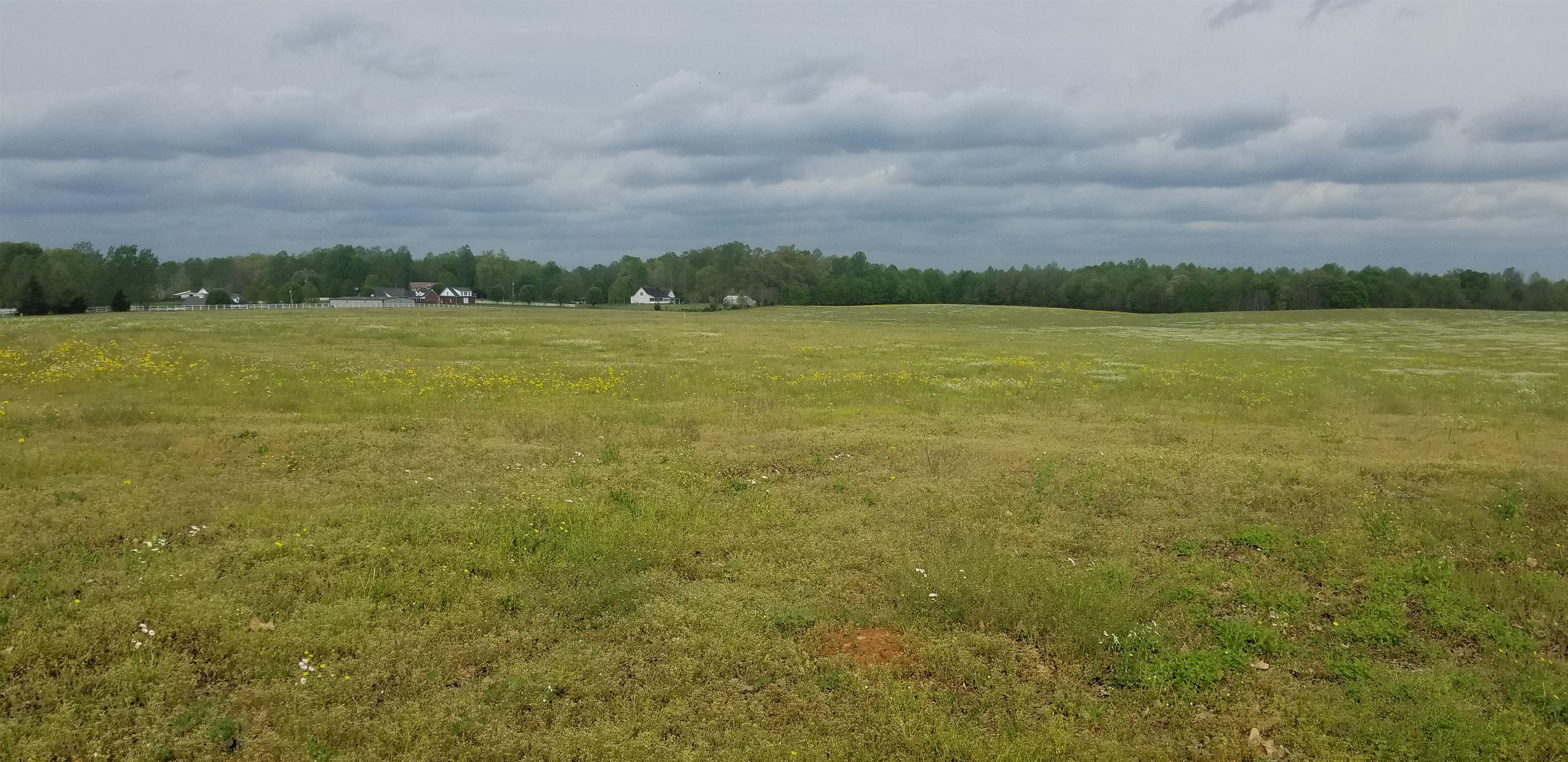 0 Cat Creek Rd, Manchester, TN 37355 - Manchester, TN real estate listing