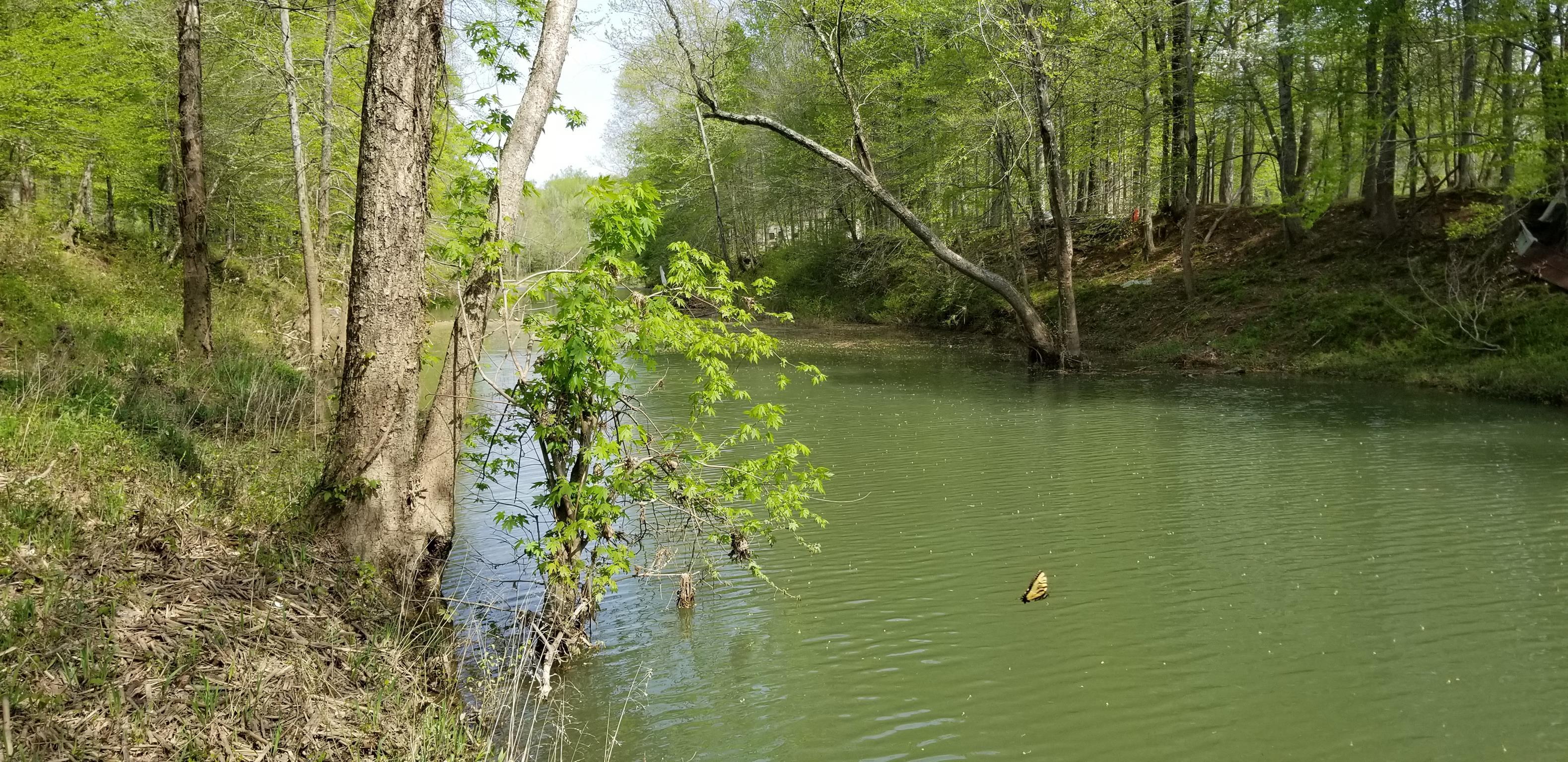 0 Buffalo River E Of 13 Hwy, Lobelville, TN 37097 - Lobelville, TN real estate listing