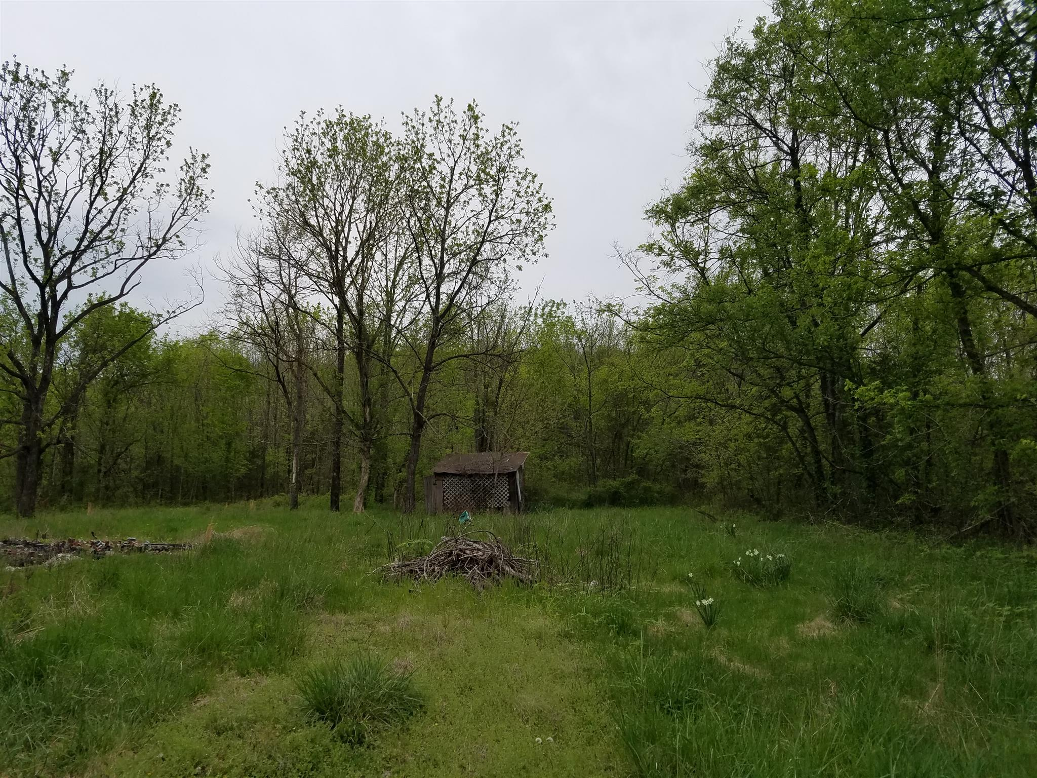 3434 Fosterville Short Creek Rd Property Photo - Bell Buckle, TN real estate listing