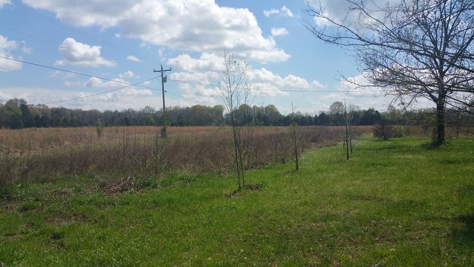 2325 Hunter Rd, Lewisburg, TN 37091 - Lewisburg, TN real estate listing