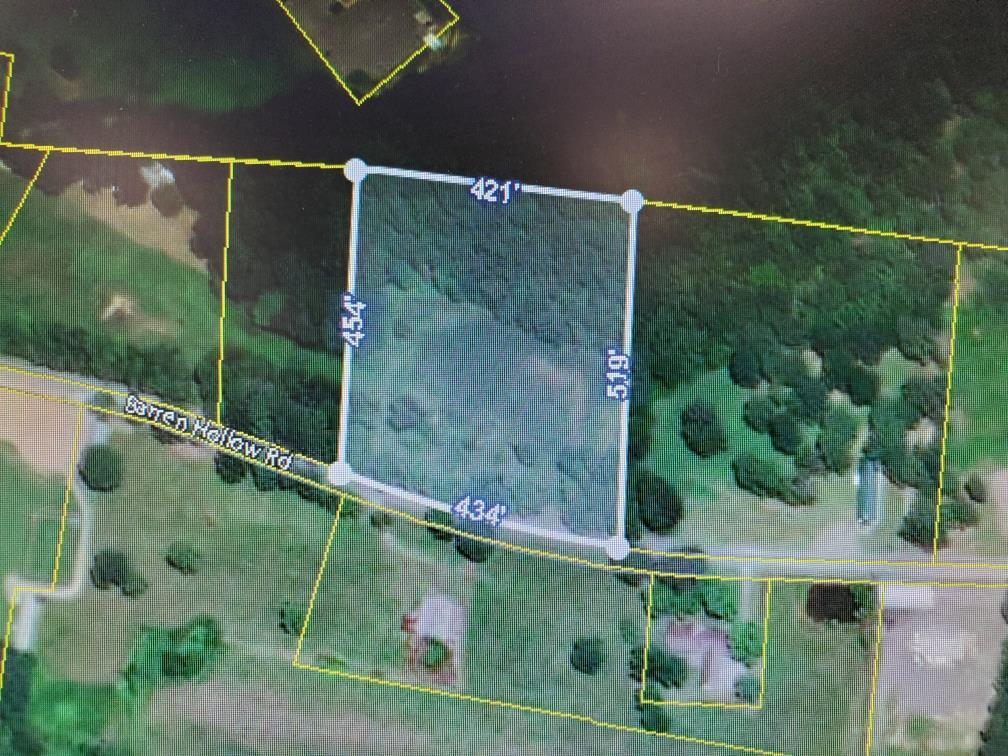 0 Barren Hollow Rd Property Photo - Hurricane Mills, TN real estate listing