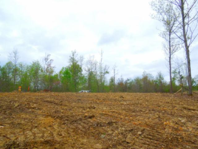 31 .49ac Pleasant Cemetery Rd, Gainesboro, TN 38562 - Gainesboro, TN real estate listing