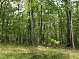 2 Magnolia Ct, Wilder, TN 38589 - Wilder, TN real estate listing