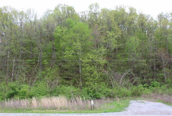 0 Johnson Hollow Rd, Thompsons Station, TN 37179 - Thompsons Station, TN real estate listing