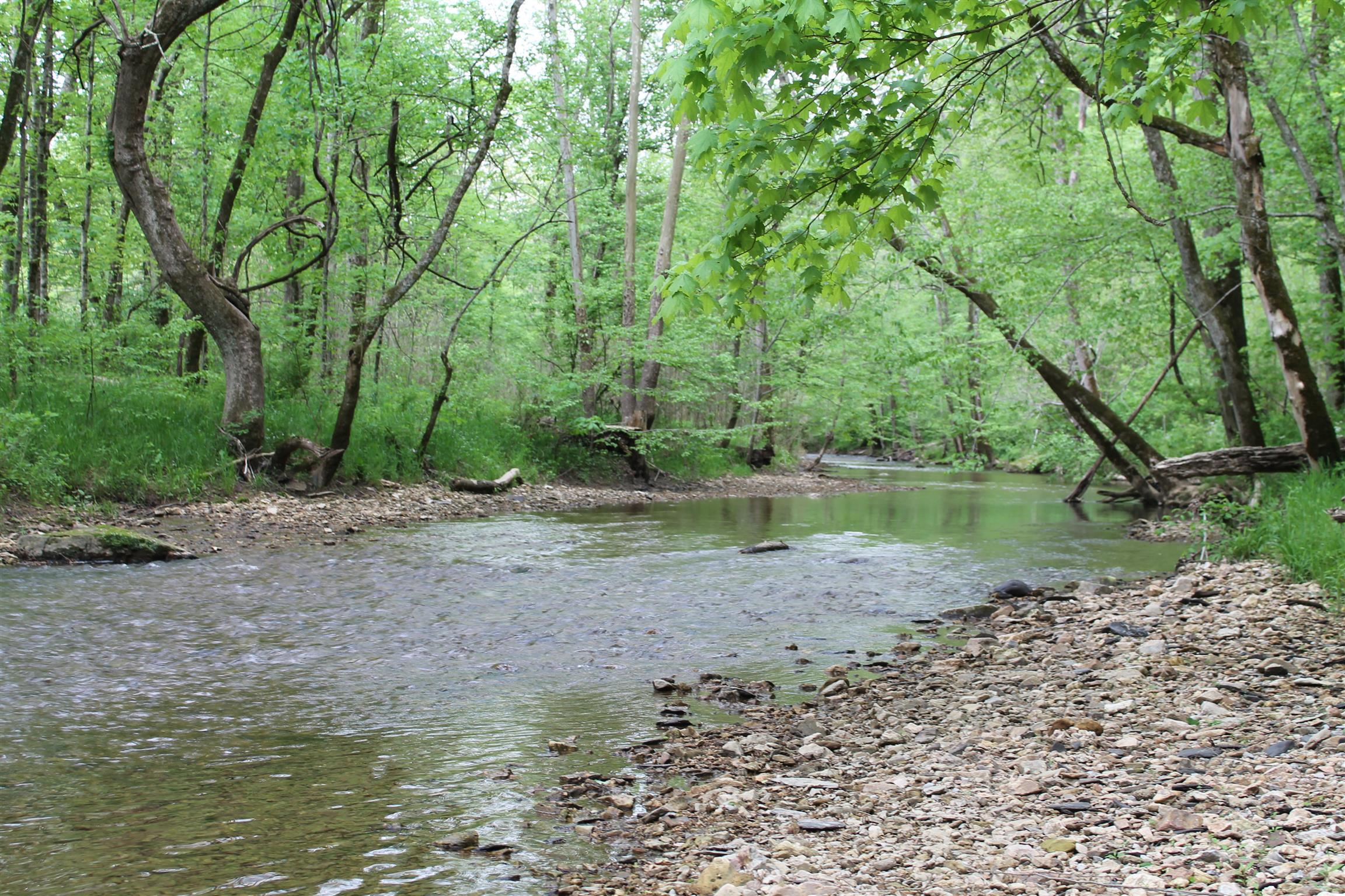 0 Puncheon Creek Rd, Lafayette, TN 37083 - Lafayette, TN real estate listing
