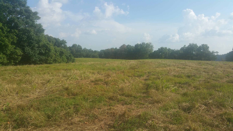 0 Maggart Rd, Chestnut Mound, TN 38552 - Chestnut Mound, TN real estate listing
