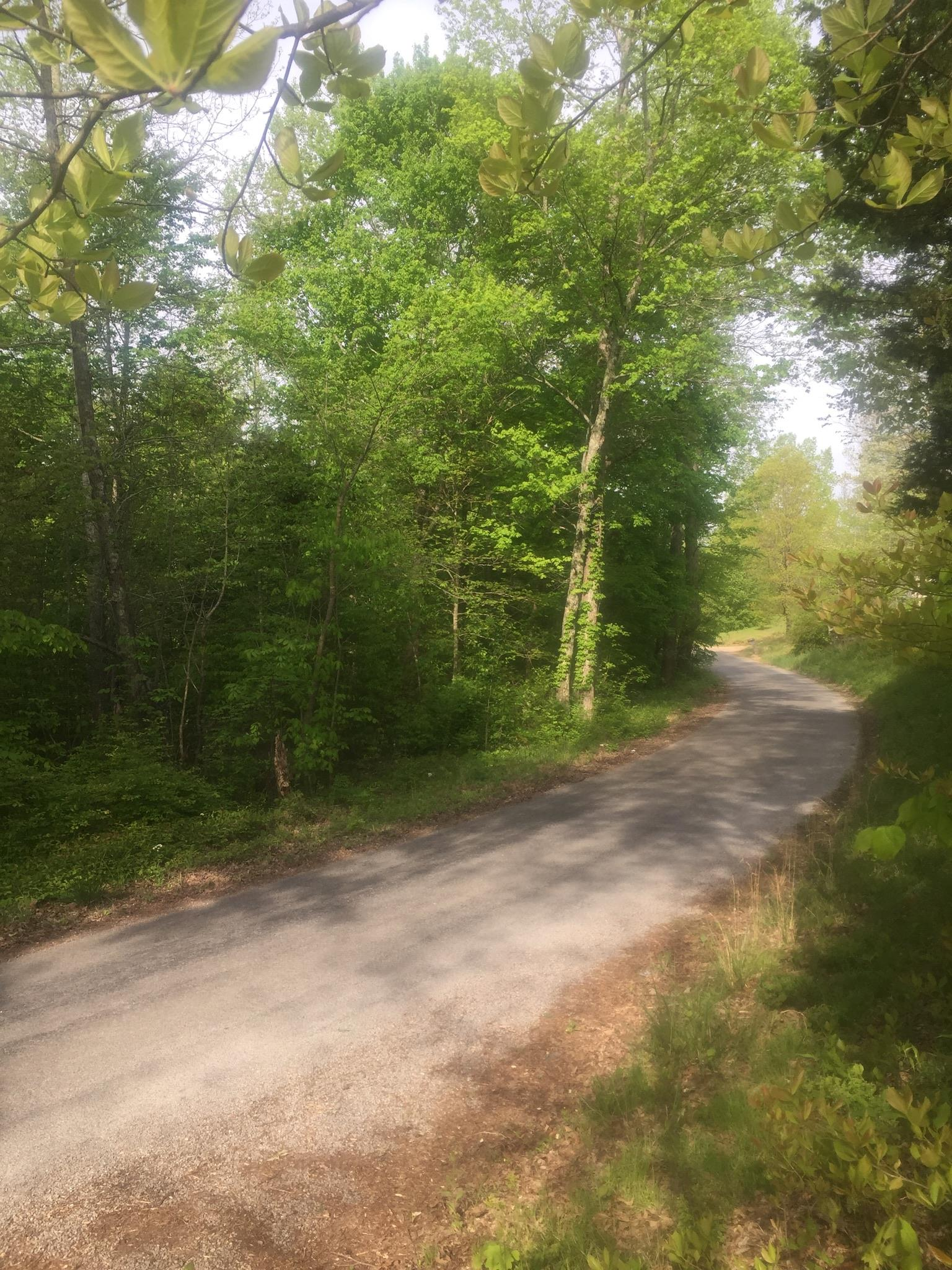 0 Elzie Williams Rd, Red Boiling Springs, TN 37150 - Red Boiling Springs, TN real estate listing