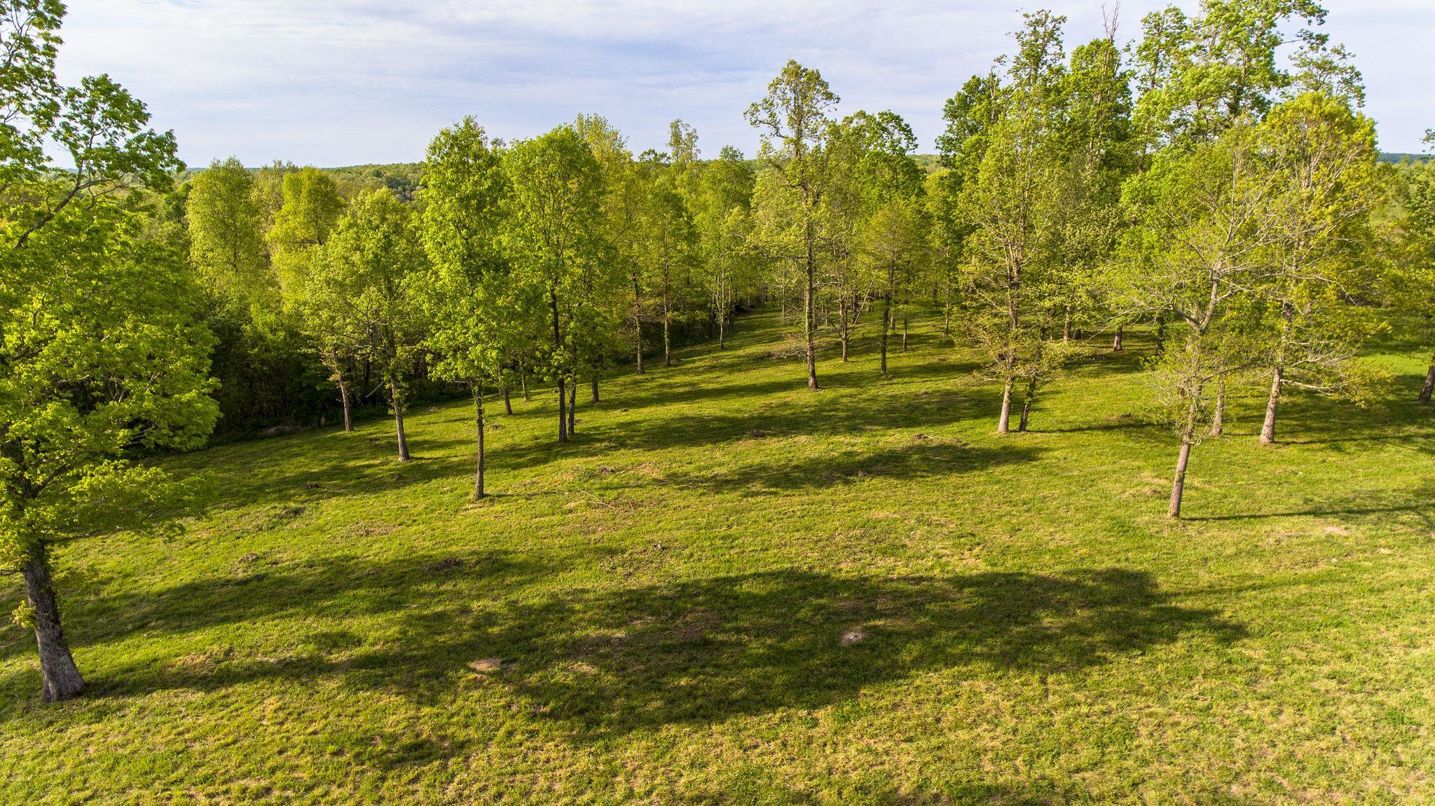 7850 W Lick Creek Rd, Primm Springs, TN 38476 - Primm Springs, TN real estate listing