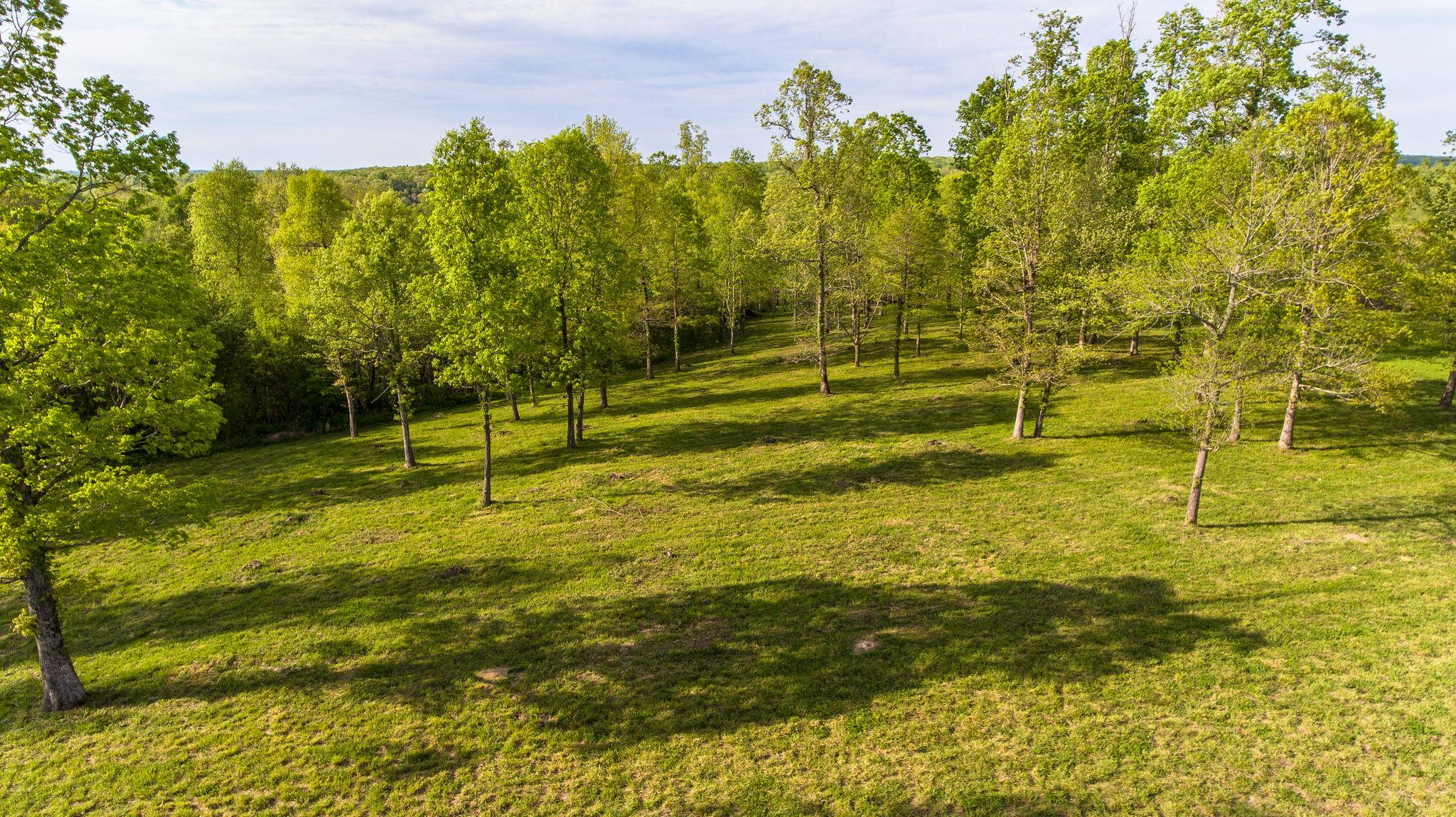 7850 W Lick Creek Rd, Primm Springs, TN 38476 - Primm Springs, TN real estate listing
