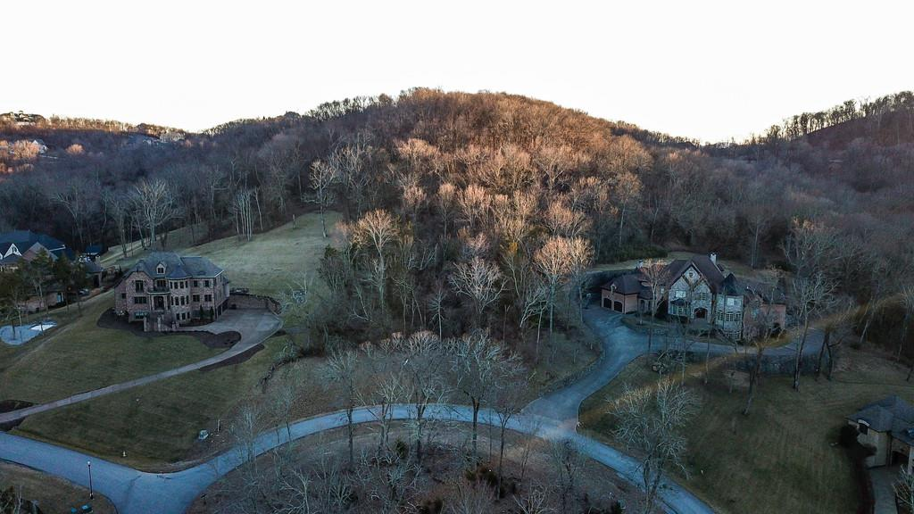 391 Lady of the Lake Lane, Franklin, TN 37067 - Franklin, TN real estate listing