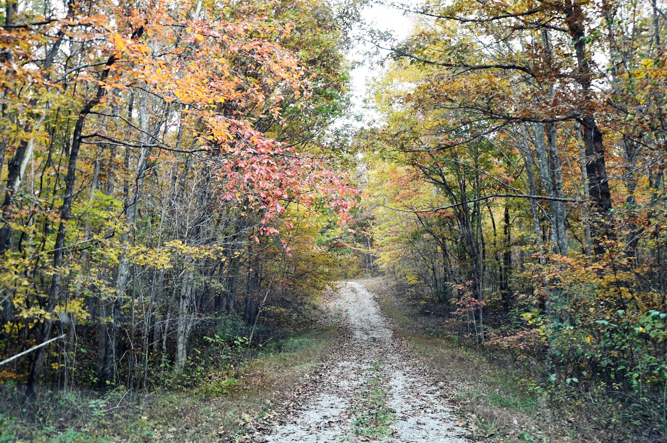 104 Swimming Deer, Graysville, TN 37338 - Graysville, TN real estate listing
