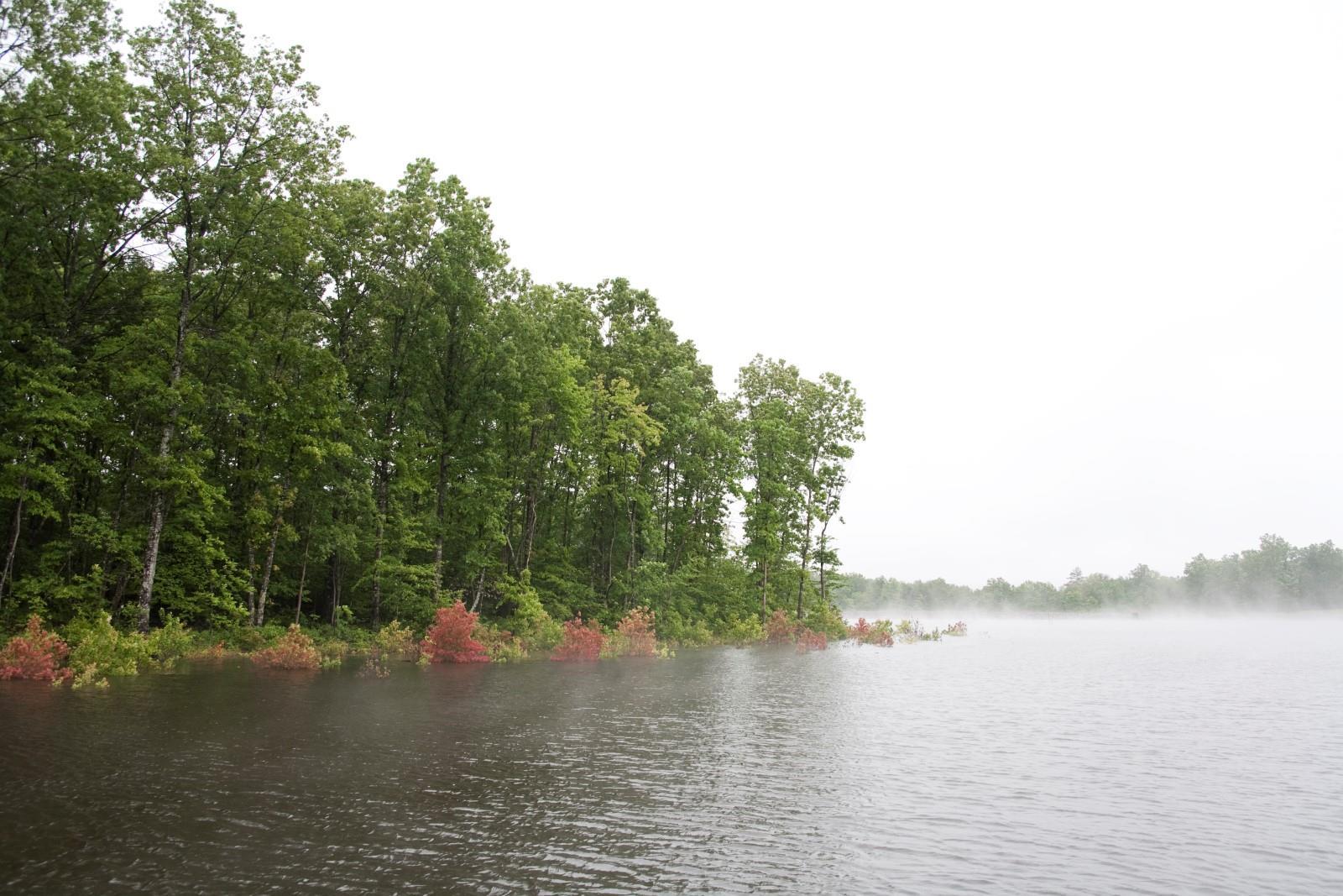 100 Seven Coves, Graysville, TN 37338 - Graysville, TN real estate listing