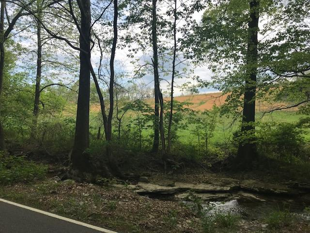 0 Rogues Fork Rd, Bethpage, TN 37022 - Bethpage, TN real estate listing
