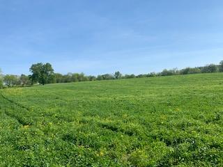 0 Rawlings Road Property Photo - Woodlawn, TN real estate listing