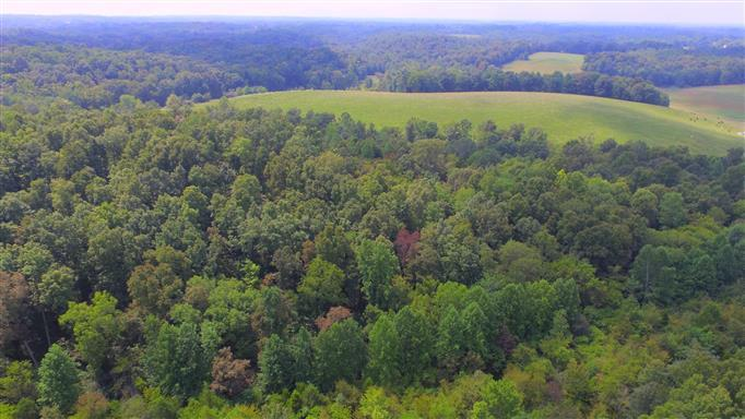 0 Mount Vernon Rd, Bethpage, TN 37022 - Bethpage, TN real estate listing