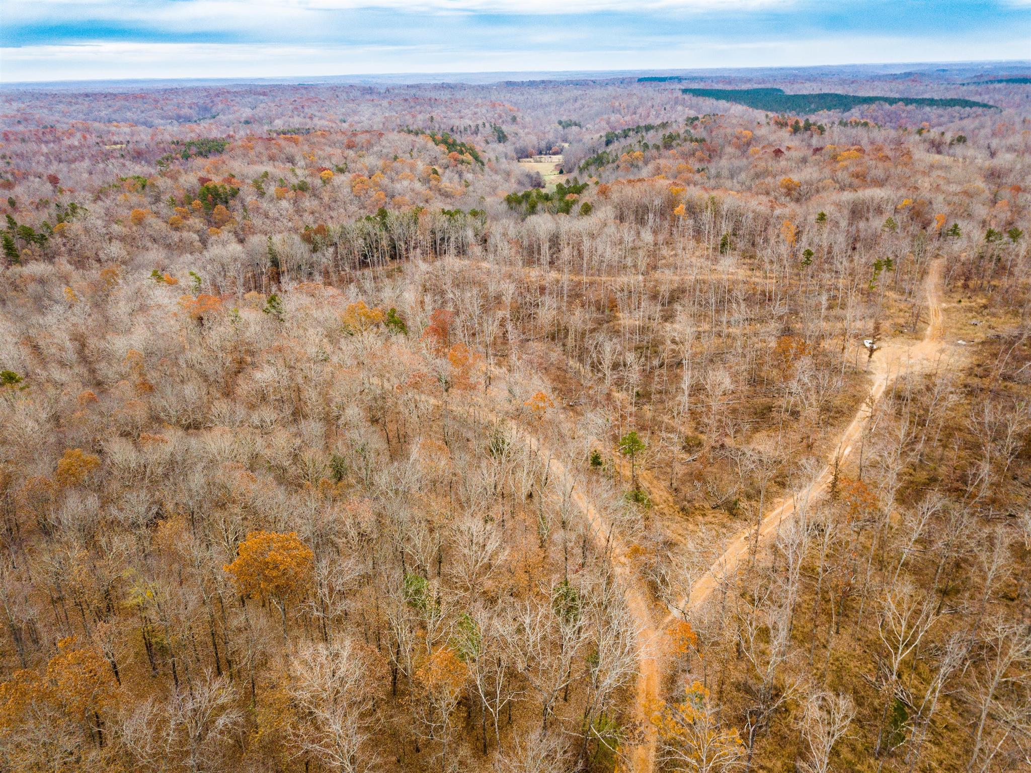 0 Beasley Hollow , Only, TN 37140 - Only, TN real estate listing