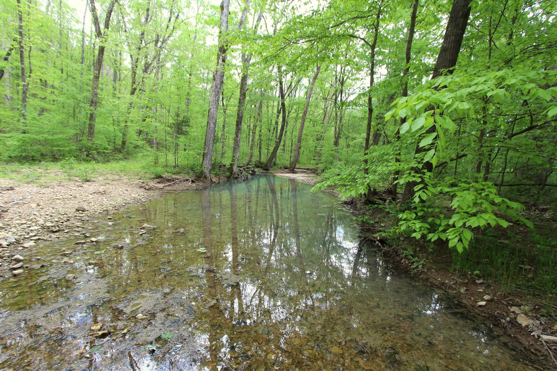 0 Highway 13 S W Of Property Photo - Hurricane Mills, TN real estate listing