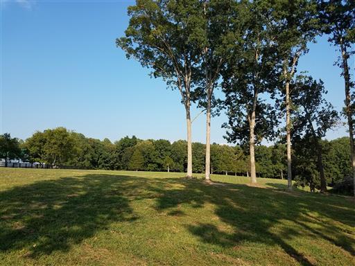 3 Barnhill Rd, Primm Springs, TN 38476 - Primm Springs, TN real estate listing