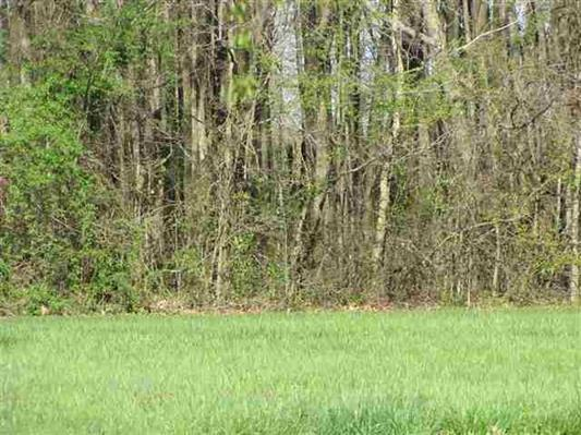 0 Cardinal Drive, Tract 3, Franklin, KY 42134 - Franklin, KY real estate listing
