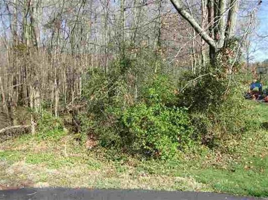 0 Timberlane, Tract 1, Franklin, KY 42134 - Franklin, KY real estate listing