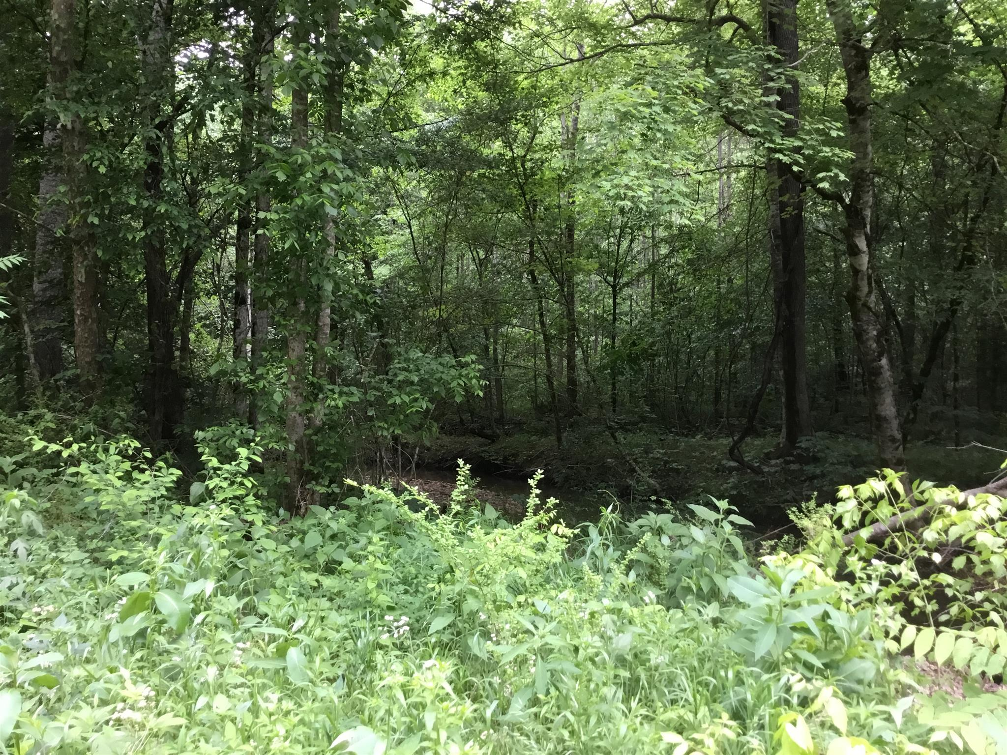 0 Teal Hollow Rd, Fayetteville, TN 37334 - Fayetteville, TN real estate listing